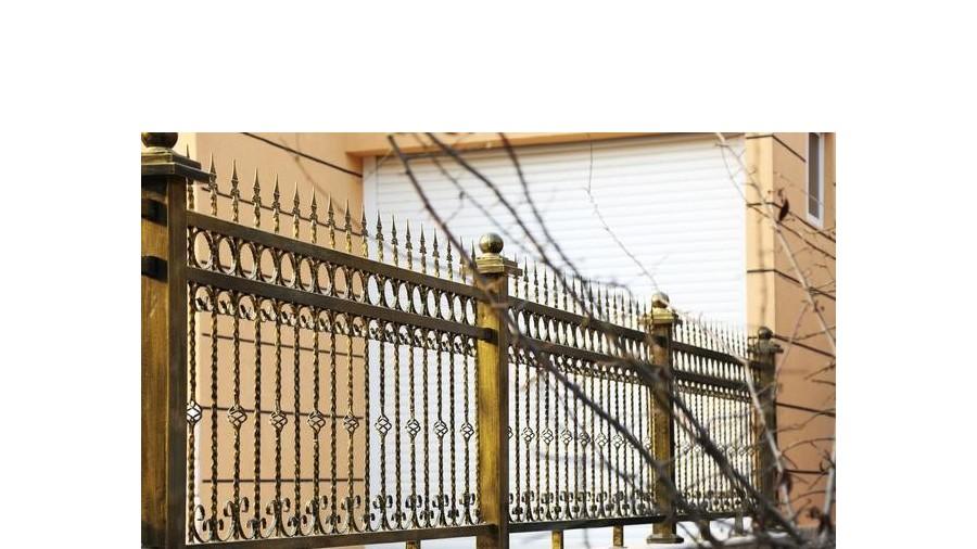 """栅栏质量不好,动物园猕猴""""离家出走"""""""